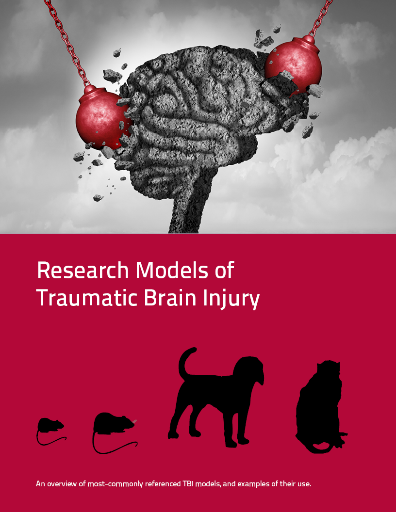 TBI research models